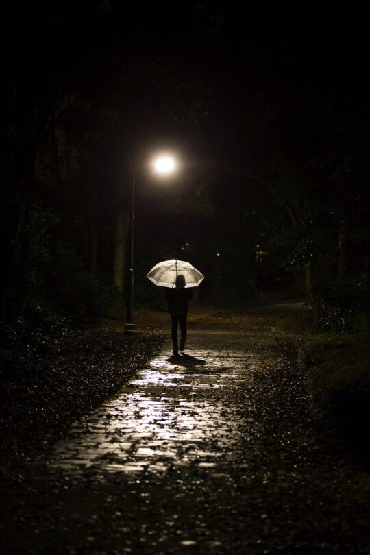 ブラックミスト 作例 夜の公園2